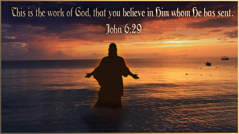 God's Work Displayed