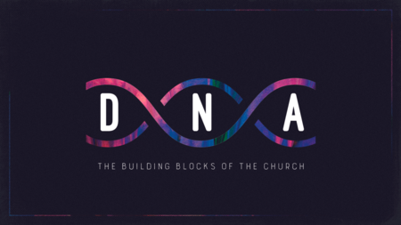 DNA: The Building Blocks of the Church