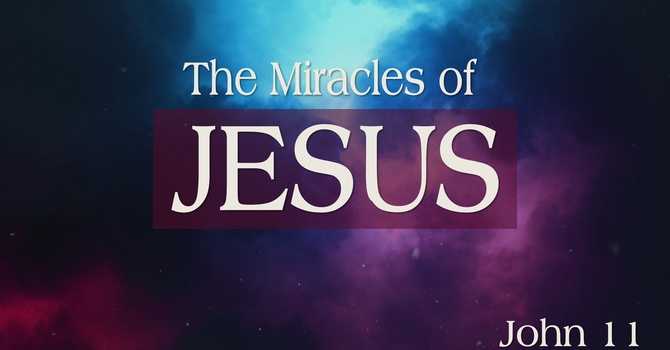 The Miracles of Jesus - Part 6
