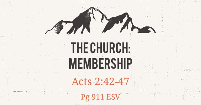 CVBC 5.9.21 {The Church Week 4}